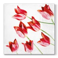 Obrousky PAW L 33X33cm Red Tulips