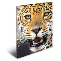Deska s gumičkou PP A4 Leopard