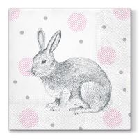 Obrousky PAW L 33X33cm Bunnies on Dots
