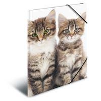 Deska s gumičkou PP A3 Cats
